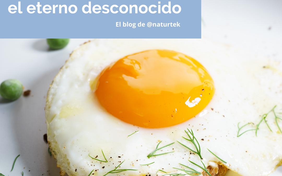 El huevo, el eterno desconocido